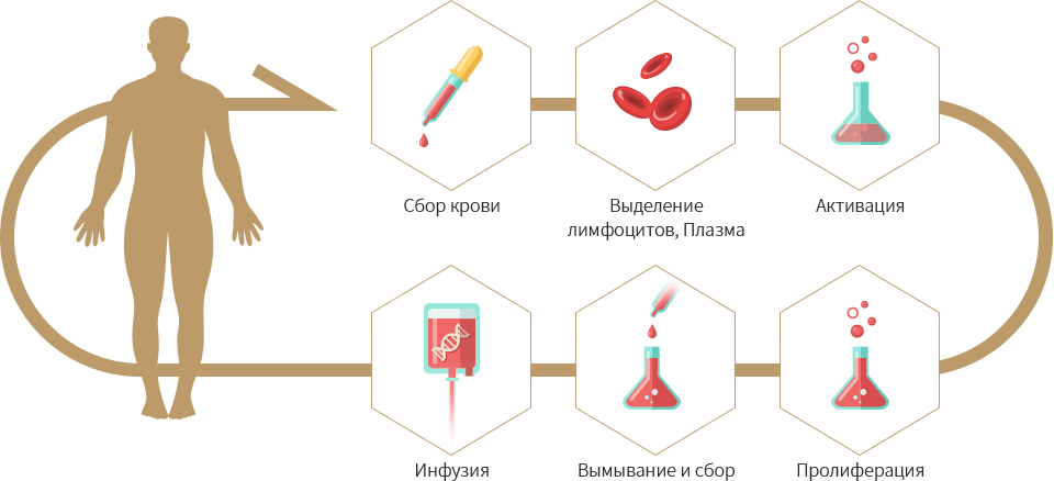 Blood Collection - Isolation of Lymphocyte, Plasma - Activation - Infusion - Washout and Harvest - Proliferation
